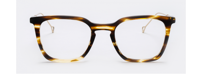 Haze Collection BELSEN Eyeglasses